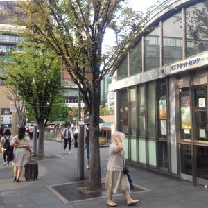 VMMS京都校までの行き方13