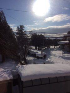 2017年初雪とライブ♪