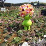 【高田馬場校】いろんな花と、いろんな個性