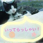 【高田馬場校】いってらっしゃい!!