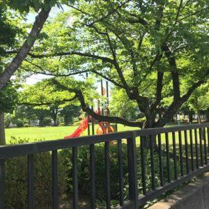 【新宿校】梅雨の大切さに気付く