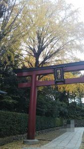 秋の日はつるべ落とし_1