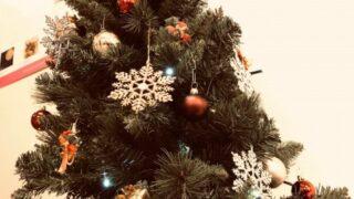 【横浜校】今年もやってきたクリスマスツリー