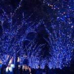 【新宿校】冬の始まり…☆