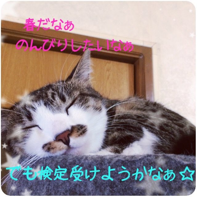【新宿校】歌う準備は出来てますか?