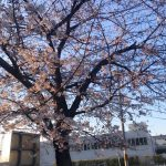 【京都校】環境の変化