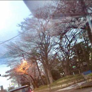 【高田馬場校】春らしくなってきましたね☆