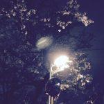 春と言えば桜木花道、桜木花道と言えばSLAM DUNK、豪快に決めようぜ!ベリメリオーディション!!