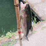 【京都校】避暑地でマス釣り!