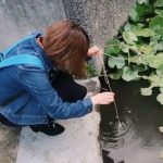 【京都校】ザリガニ釣ったよー!