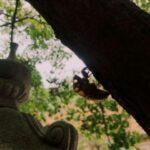 【京都校】蝉!