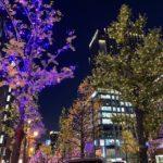 【京都校】イルミネーションの季節♪