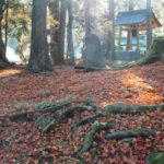 【京都校】季節の楽しみ方