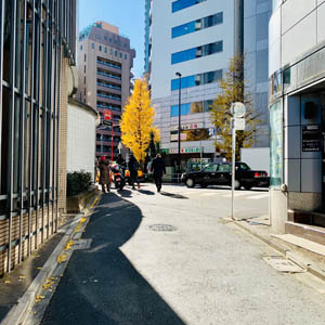 JR総武線 大久保駅から徒歩の場合-02