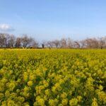 【京都校】春を先取り♪