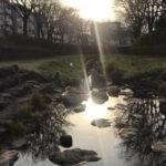 【新宿校】川沿い散歩