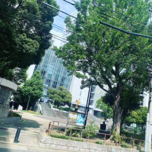 【名古屋校】栄ロフト前にある「矢場公園」の更に前にあるベリメリ!
